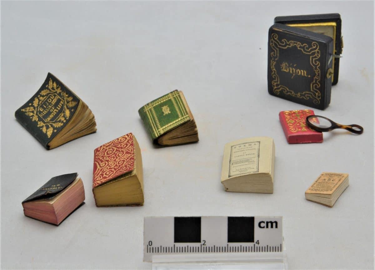Cabinets of Curiosity 6 F0315 Miniature books