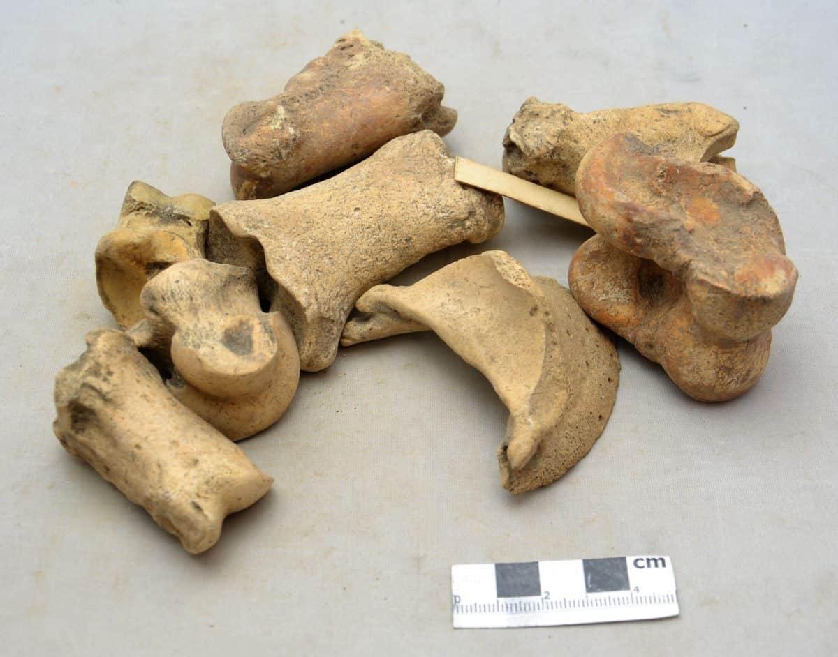 Romans 11 DSC_0720 knuckle bones