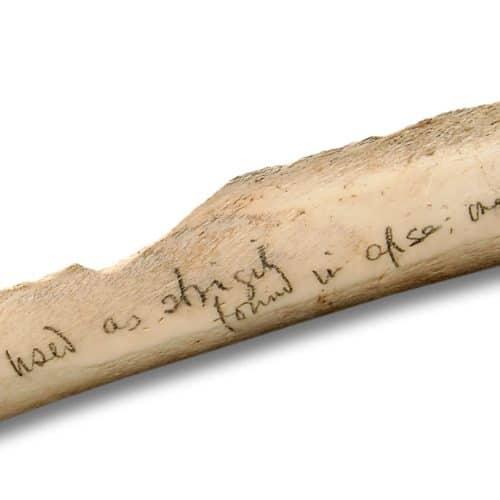 Romans Resources Bone strigil - close-up